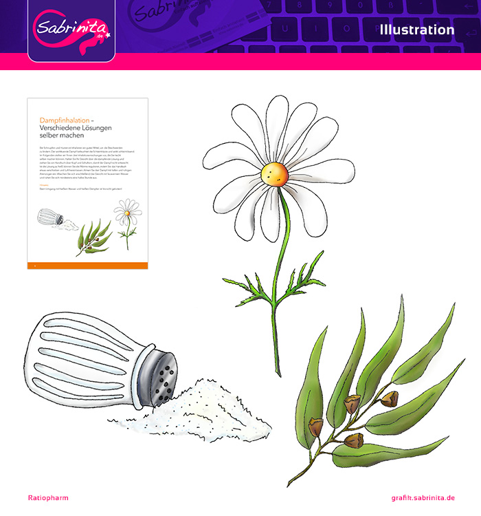 Referenz: Illustration Salz, Kamille, Eukalyptusblatt - Ratiopharm Broschüre